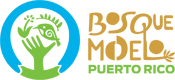 Oficina del Bosque Modelo de Puerto Rico Logo